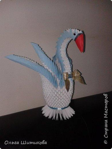 Животные, птицы, драконы фото 6