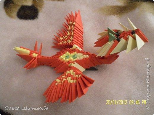 Животные, птицы, драконы фото 9