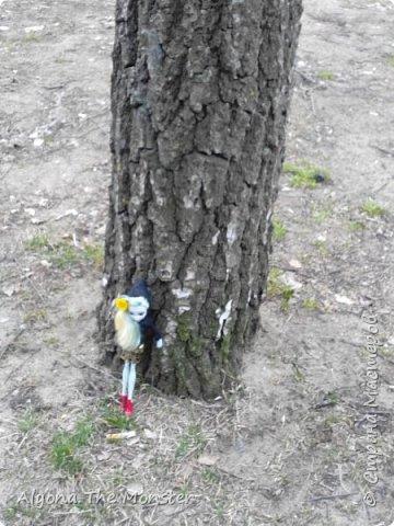 Всем привет! Ещё весной я с Лагуной и Гилом устроила весеннюю фотосессию. Здесь они стоят около дерева. фото 5