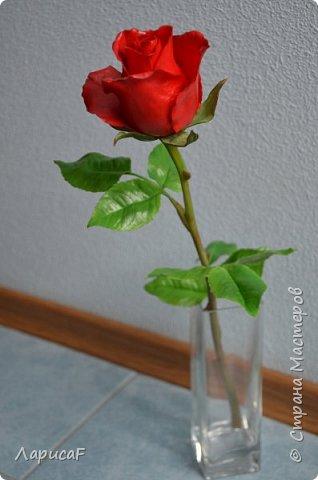 Розы. Именно с роз я начала! Покажу вам свои первые работы. Розы бывают разные…  Все эти работы подарены ))) фото 6