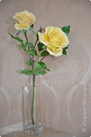 Розы. Именно с роз я начала! Покажу вам свои первые работы. Розы бывают разные…  Все эти работы подарены ))) фото 13