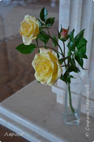 Розы. Именно с роз я начала! Покажу вам свои первые работы. Розы бывают разные…  Все эти работы подарены ))) фото 12