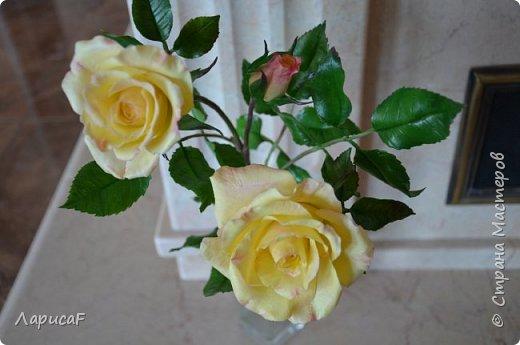 Розы. Именно с роз я начала! Покажу вам свои первые работы. Розы бывают разные…  Все эти работы подарены ))) фото 14