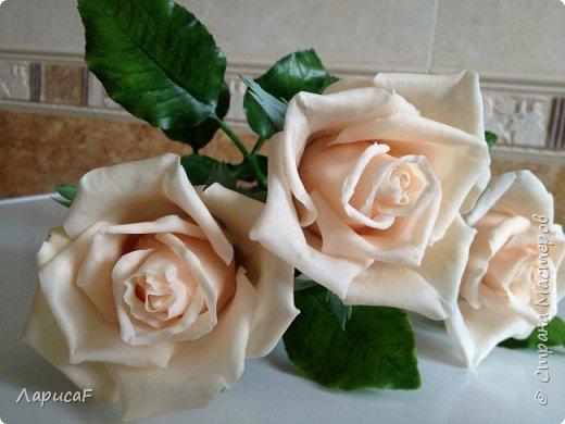 Розы. Именно с роз я начала! Покажу вам свои первые работы. Розы бывают разные…  Все эти работы подарены ))) фото 10