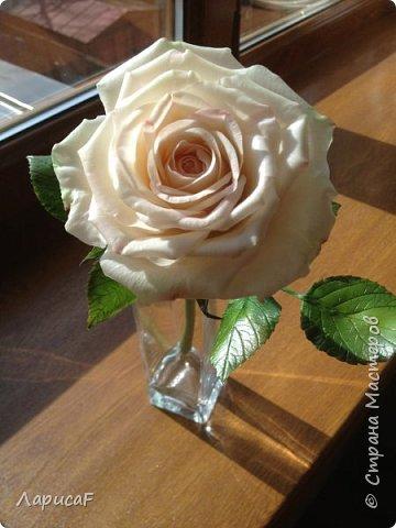 Розы. Именно с роз я начала! Покажу вам свои первые работы. Розы бывают разные…  Все эти работы подарены ))) фото 7