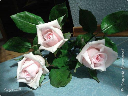 Розы. Именно с роз я начала! Покажу вам свои первые работы. Розы бывают разные…  Все эти работы подарены ))) фото 1