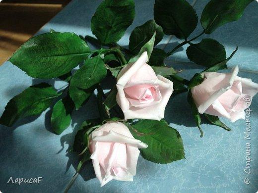 Розы. Именно с роз я начала! Покажу вам свои первые работы. Розы бывают разные…  Все эти работы подарены ))) фото 3