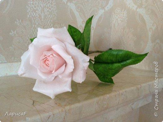 Розы. Именно с роз я начала! Покажу вам свои первые работы. Розы бывают разные…  Все эти работы подарены ))) фото 16
