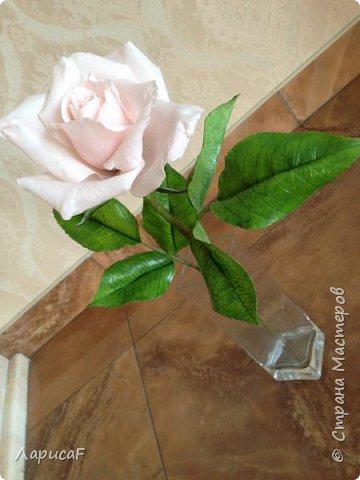 Розы. Именно с роз я начала! Покажу вам свои первые работы. Розы бывают разные…  Все эти работы подарены ))) фото 15