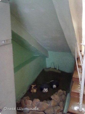 """Оформление под 1 лестницей. """"ДО"""" фото 1"""