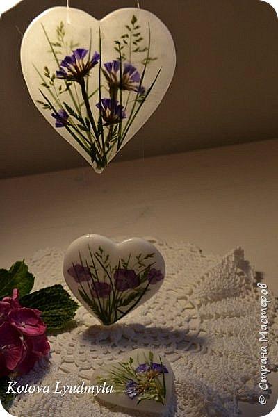 Здравствуйте, девочки. В продолжение лиловой темы моя последняя работа - подсвечники и подвески из сердечек. Делала для себя и на подарок близкому человеку.   Работа довольно трудоемкая, непередать, сколько проб я сделала. Как всегда Огромная Благодарность моему вдохновителю - Aneta Szuniewicz. Все сделано из парафина, для декорации использовала гербарий трав и гортензии, которая цветет у меня в саду. Подсвечник довольно большой, его диаметр 12см, а высота - 15см.  Это фото я делала на улице. фото 7