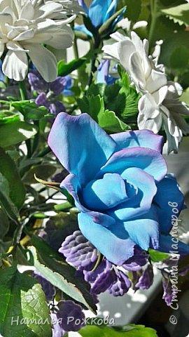 Мастер-класс Лепка Моя небольшая композиция хризантемы и розы А также мк по хризантемам и описание цвета синих роз проблема та еще  Фарфор холодный фото 3