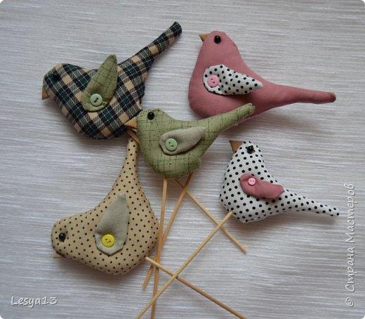 Привет всем! Добро пожаловать на мастер-класс по шитью птичек-тильд, очень милых и очаровательных созданий ) Шьются они очень легко, просто и быстро. Автор таких птичек - норвежский дизайнер Тони Финангер — создательница куклы Тильда. фото 1