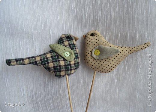 Привет всем! Добро пожаловать на мастер-класс по шитью птичек-тильд, очень милых и очаровательных созданий ) Шьются они очень легко, просто и быстро. Автор таких птичек - норвежский дизайнер Тони Финангер — создательница куклы Тильда. фото 12
