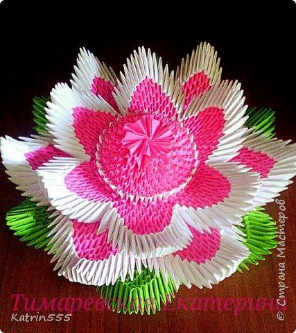 372932_img_20150712_121623 Цветок лотоса из бумаги в технике оригами (мастер-класс). Воспитателям детских садов, школьным учителям и педагогам