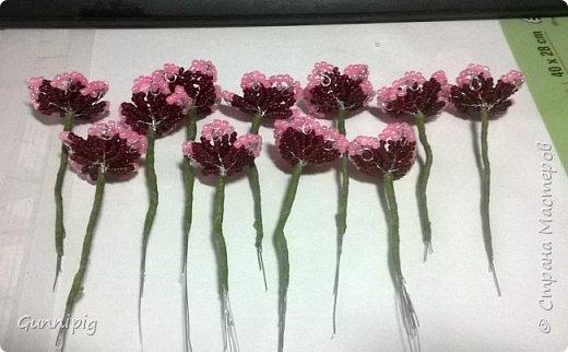 Здравствуйте. Сегодня хочу вам представить мастер-класс по плетению флоксов или турецкой гвоздики из бисера (ибо цветки у этих растений очень похожи, можно по данному МК плести как те, так и другие цветочки). Может кто-нибудь тоже захочет создать для себя или в подарок эти замечательные цветы! Флоксы - богатая тема для фантазии, ибо расцветок, форм и видов этих растений очень много! Я решила сплести двухцветные флоксы. Приступим) фото 11