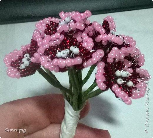 Здравствуйте. Сегодня хочу вам представить мастер-класс по плетению флоксов или турецкой гвоздики из бисера (ибо цветки у этих растений очень похожи, можно по данному МК плести как те, так и другие цветочки). Может кто-нибудь тоже захочет создать для себя или в подарок эти замечательные цветы! Флоксы - богатая тема для фантазии, ибо расцветок, форм и видов этих растений очень много! Я решила сплести двухцветные флоксы. Приступим) фото 13
