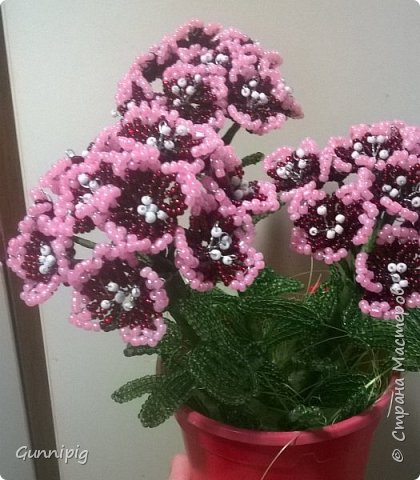 Здравствуйте. Сегодня хочу вам представить мастер-класс по плетению флоксов или турецкой гвоздики из бисера (ибо цветки у этих растений очень похожи, можно по данному МК плести как те, так и другие цветочки). Может кто-нибудь тоже захочет создать для себя или в подарок эти замечательные цветы! Флоксы - богатая тема для фантазии, ибо расцветок, форм и видов этих растений очень много! Я решила сплести двухцветные флоксы. Приступим) фото 23