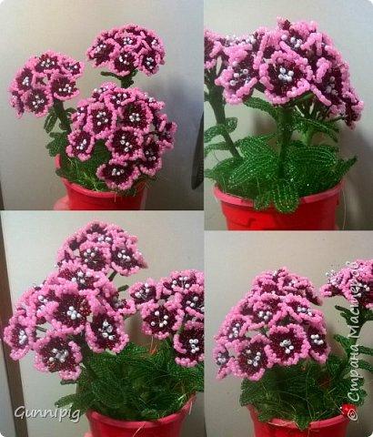 Здравствуйте. Сегодня хочу вам представить мастер-класс по плетению флоксов или турецкой гвоздики из бисера (ибо цветки у этих растений очень похожи, можно по данному МК плести как те, так и другие цветочки). Может кто-нибудь тоже захочет создать для себя или в подарок эти замечательные цветы! Флоксы - богатая тема для фантазии, ибо расцветок, форм и видов этих растений очень много! Я решила сплести двухцветные флоксы. Приступим) фото 1