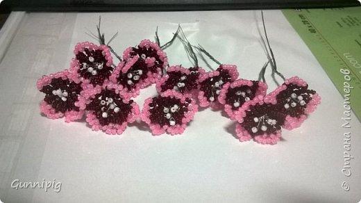 Здравствуйте. Сегодня хочу вам представить мастер-класс по плетению флоксов или турецкой гвоздики из бисера (ибо цветки у этих растений очень похожи, можно по данному МК плести как те, так и другие цветочки). Может кто-нибудь тоже захочет создать для себя или в подарок эти замечательные цветы! Флоксы - богатая тема для фантазии, ибо расцветок, форм и видов этих растений очень много! Я решила сплести двухцветные флоксы. Приступим) фото 10