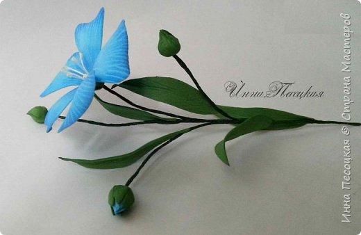Лён - символ семьи, домашнего очага. Казалось бы обычный цветок, небольшого размера. Но когда он цветет, поле его голубых цветов называют «голубое небо». Мой МК посвящен изготовлению цветка льна из фоамирана.  фото 3