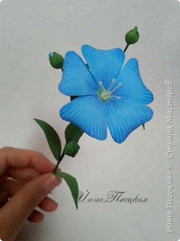 Лён - символ семьи, домашнего очага. Казалось бы обычный цветок, небольшого размера. Но когда он цветет, поле его голубых цветов называют «голубое небо». Мой МК посвящен изготовлению цветка льна из фоамирана.  фото 2