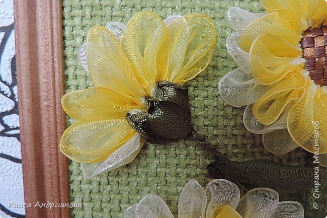 понадобится: органза(ширина 4см) двух цветов для цветка и листьев, атласная лента(ширина 1см) зеленого цвета для чашелистиков и стебля, атласная лента(ширина 0,3см) двух цветов для сердцевины цветка, ткань или канва, нитки. фото 11