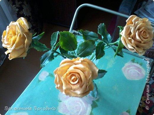 Здравствуйте жители Страны Мастеров.У меня новая попытка сделать розы с холодного фарфора.Выношу на ваше обозрение. фото 2