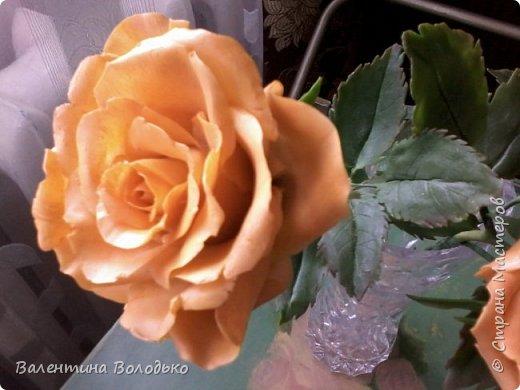 Здравствуйте жители Страны Мастеров.У меня новая попытка сделать розы с холодного фарфора.Выношу на ваше обозрение. фото 3