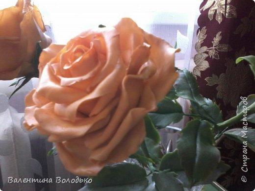 Здравствуйте жители Страны Мастеров.У меня новая попытка сделать розы с холодного фарфора.Выношу на ваше обозрение. фото 5