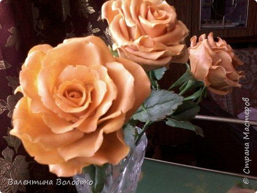 Здравствуйте жители Страны Мастеров.У меня новая попытка сделать розы с холодного фарфора.Выношу на ваше обозрение. фото 7