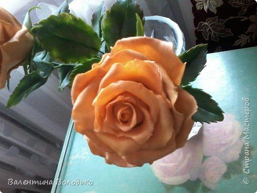 Здравствуйте жители Страны Мастеров.У меня новая попытка сделать розы с холодного фарфора.Выношу на ваше обозрение. фото 8