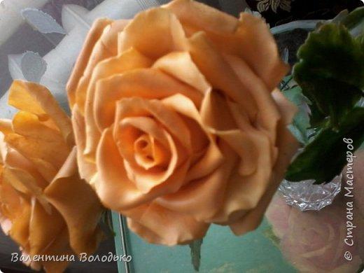 Здравствуйте жители Страны Мастеров.У меня новая попытка сделать розы с холодного фарфора.Выношу на ваше обозрение. фото 9