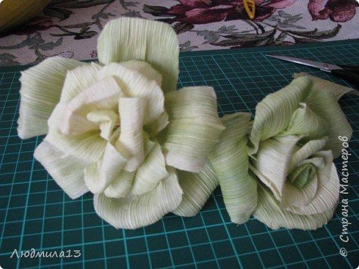 Здравствуйте Мастерицы! Вот и я созрела для МК. А приглянулись мне листья от кукурузы. Не наружные,грубые, а внутренние, нежно-салатового цвета. Они и по фактуре нежные. Мне как-то подарили розы такого цвета, смотрятся очень необычно. Итак, берем внутренние листья, отрезаем жесткие концы, мягкое складываем пополам. Очень важно делать цветы сразу как почистили початок, когда листья ещё мягкие. Потом они засыхают насмерть. фото 14