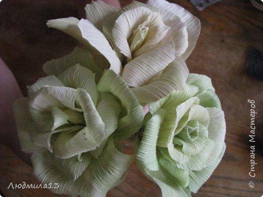 Здравствуйте Мастерицы! Вот и я созрела для МК. А приглянулись мне листья от кукурузы. Не наружные,грубые, а внутренние, нежно-салатового цвета. Они и по фактуре нежные. Мне как-то подарили розы такого цвета, смотрятся очень необычно. Итак, берем внутренние листья, отрезаем жесткие концы, мягкое складываем пополам. Очень важно делать цветы сразу как почистили початок, когда листья ещё мягкие. Потом они засыхают насмерть. фото 16