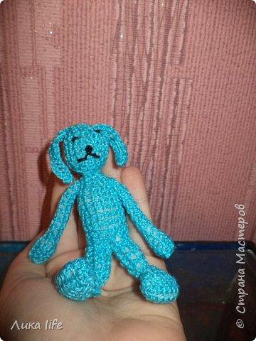 Маленький кролик фото 3