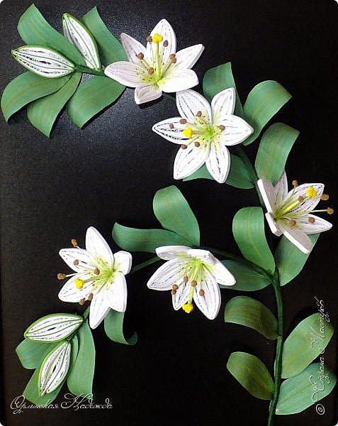 Сделала в подарок очень хорошей женщине, она очень любит эти замечательные цветы!  фото 1