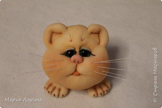 Всем большой привет! Хочу с Вами поделиться своими котиками. Небольшой МК котов, кошечек! фото 81