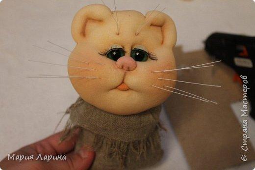 Всем большой привет! Хочу с Вами поделиться своими котиками. Небольшой МК котов, кошечек! фото 85