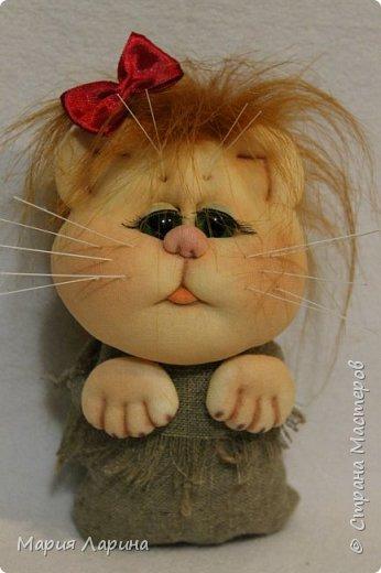 Всем большой привет! Хочу с Вами поделиться своими котиками. Небольшой МК котов, кошечек! фото <i>кот из капроновых колготок мастер класс для начинающих фото</i> 1