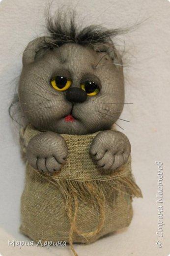 Всем большой привет! Хочу с Вами поделиться своими котиками. Небольшой МК котов, кошечек! фото 87