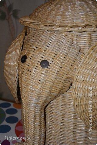 Всем привет! По многочисленным просьбам выкладываю процесс плетения корзины- слона. В мастер классах я не сильна, поэтому прошу прощения если что-то не корректно и не в тему:)  фото 1