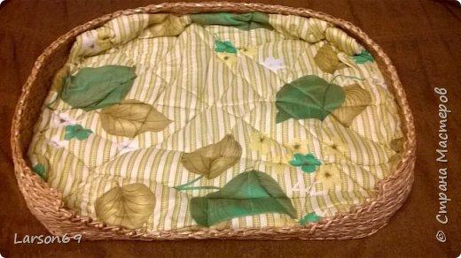Подруга попросила сделать лежак для своей собачки. Порода - бигль. Плела из газетных трубочек( белых краешков). Красила водной морилкой- дуб( разведенной). Затем лак акриловый. Матрасик- из одеяла, внутри поролон-10мм, немного простегала. фото 5