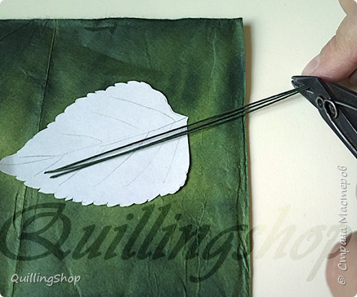 Картина панно рисунок Мастер-класс Бумагопластика Квиллинг Картина Яркие краски уходящего лета + МК Бумага Бумажные полосы фото 7
