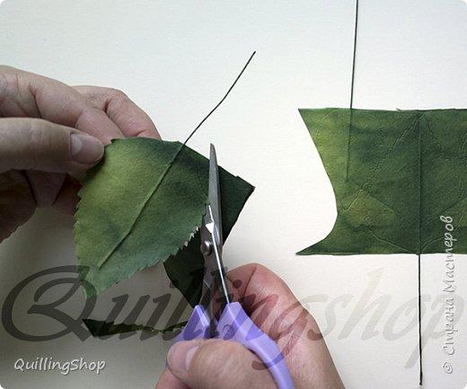 Картина панно рисунок Мастер-класс Бумагопластика Квиллинг Картина Яркие краски уходящего лета + МК Бумага Бумажные полосы фото 13