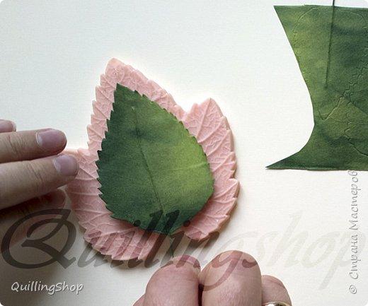 Картина панно рисунок Мастер-класс Бумагопластика Квиллинг Картина Яркие краски уходящего лета + МК Бумага Бумажные полосы фото 14