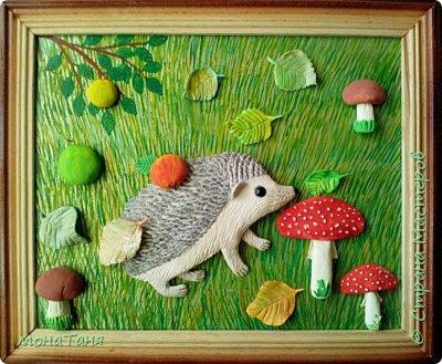 Ёжик в лесу