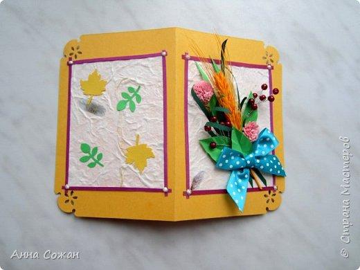 Здравствуйте друзья! Сделала подруги открытку на День Рождения! Вот такая получилась осенняя, с ягодками и жёлтым колоском.  фото 2