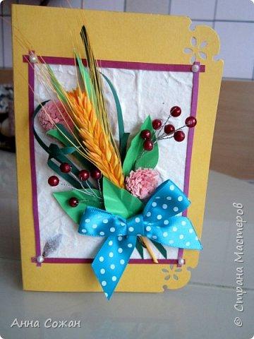 Здравствуйте друзья! Сделала подруги открытку на День Рождения! Вот такая получилась осенняя, с ягодками и жёлтым колоском.  фото 5