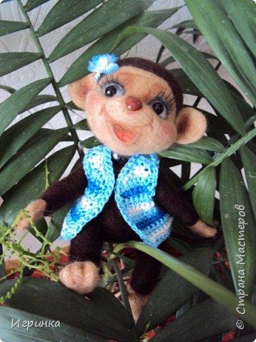 Здравствуйте друзья! Представляю Вам своих новых друзей - мишутку Ксюшеньку и обезьянку (с именем пока не определилась).  фото 7